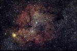 IC 1396 + la trompe